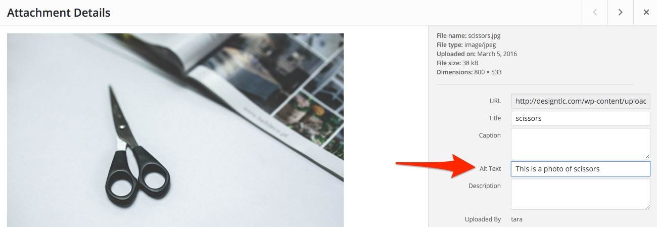 This is a screenshot of an alt text setting on an image in WordPress