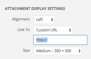 This is a screenshot of the WordPress Image Insert settings with a custom URL