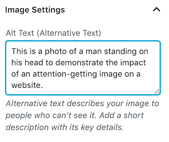 Image of Alt Text setting showing how to add images to a WordPress website