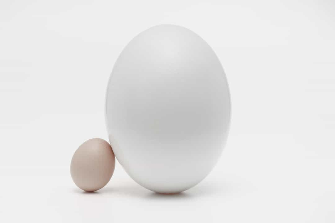 big-egg-small-egg